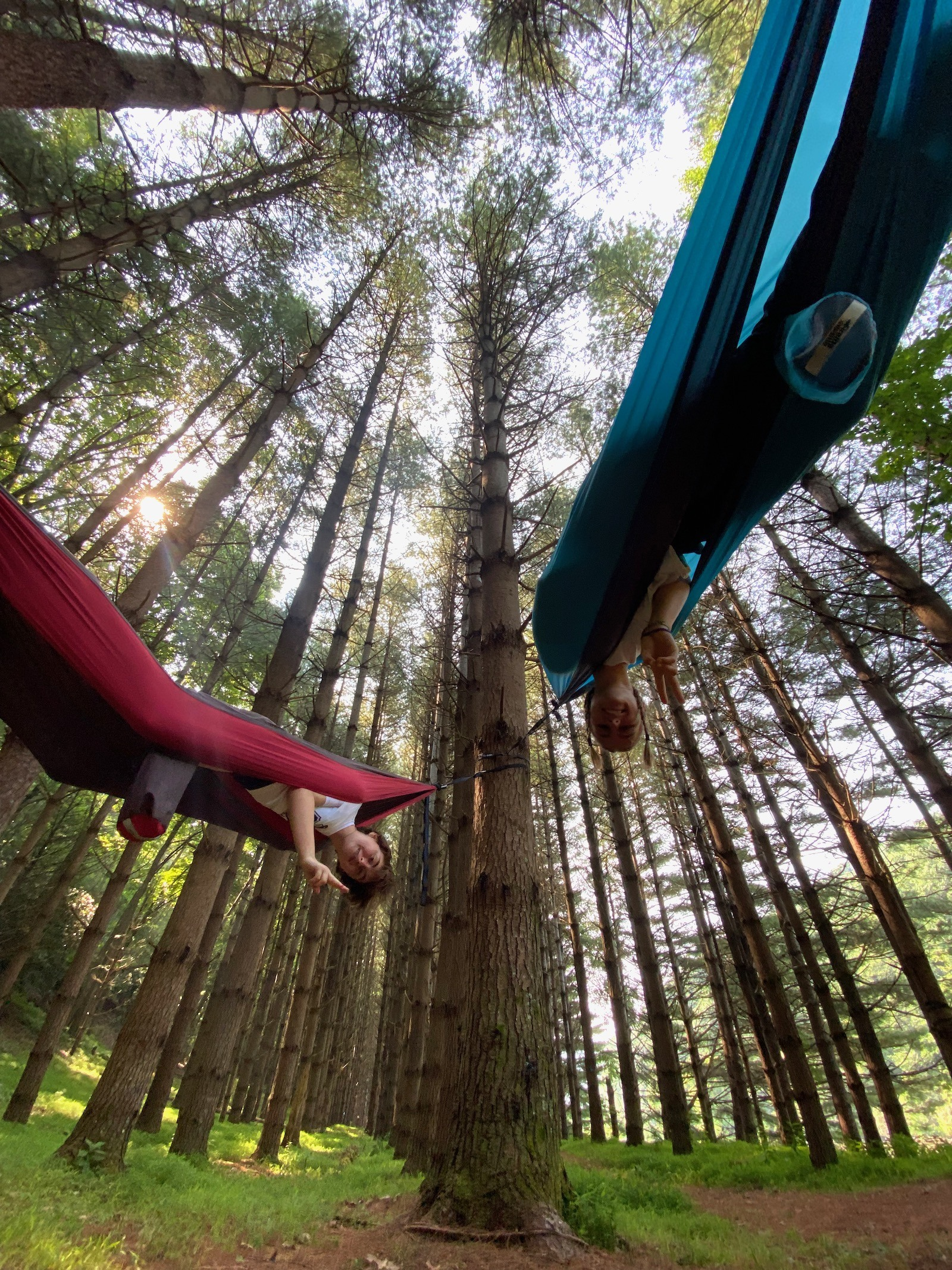 Two teenagers hanging out in hammocks tied to trees in the wilderness in North Carolina.